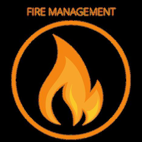 Fire Icon(1).png